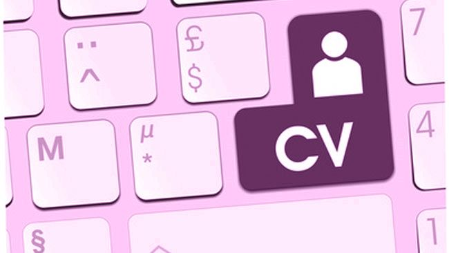 cv on line
