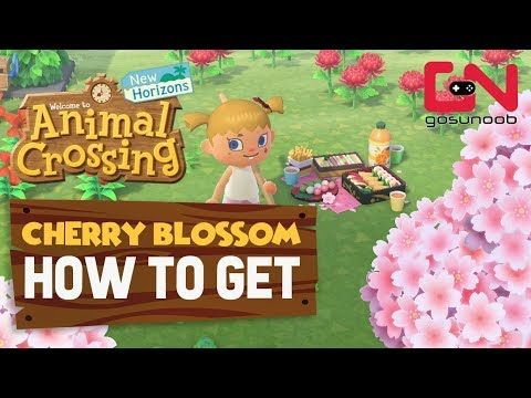 Pin By Maggie Danh On Animal Crossing Ideas Cherry Blossom Tree Blossom Trees Animal Crossing