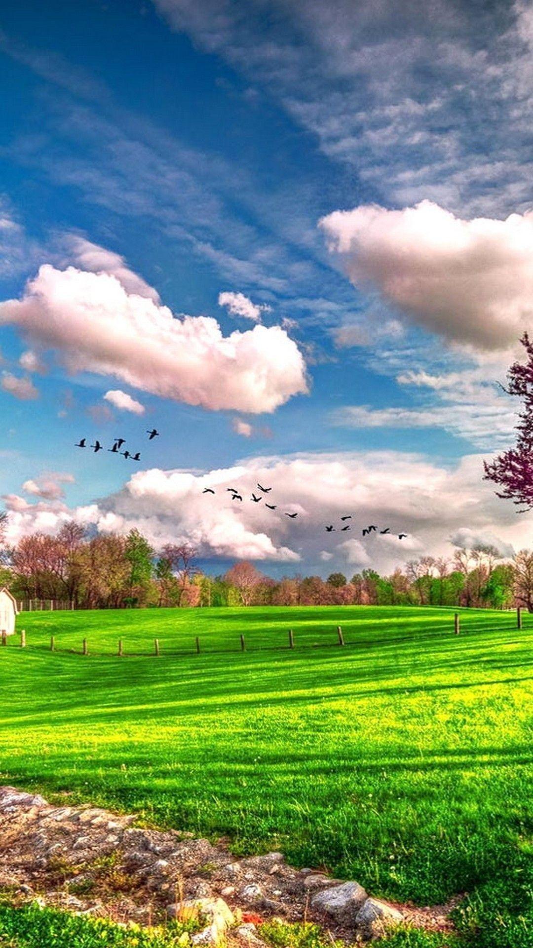 Lovely Golf Iphone Wallpaper Fotografi Alam Pemandangan Fotografi