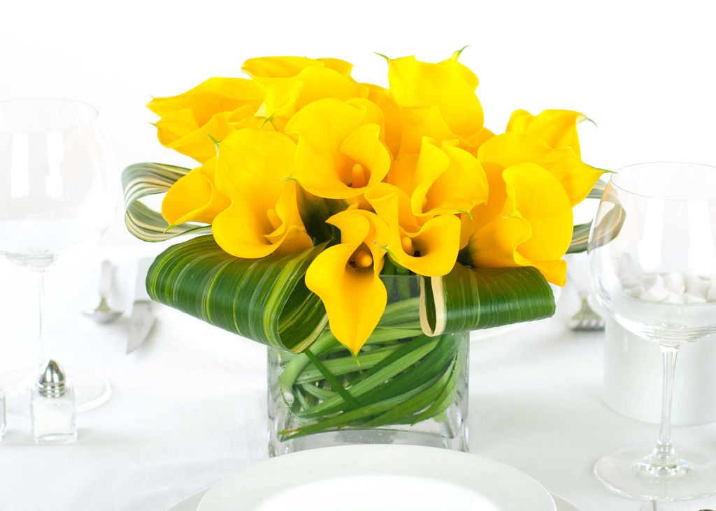 Calla lilies flowers centerpieces yellow miniature