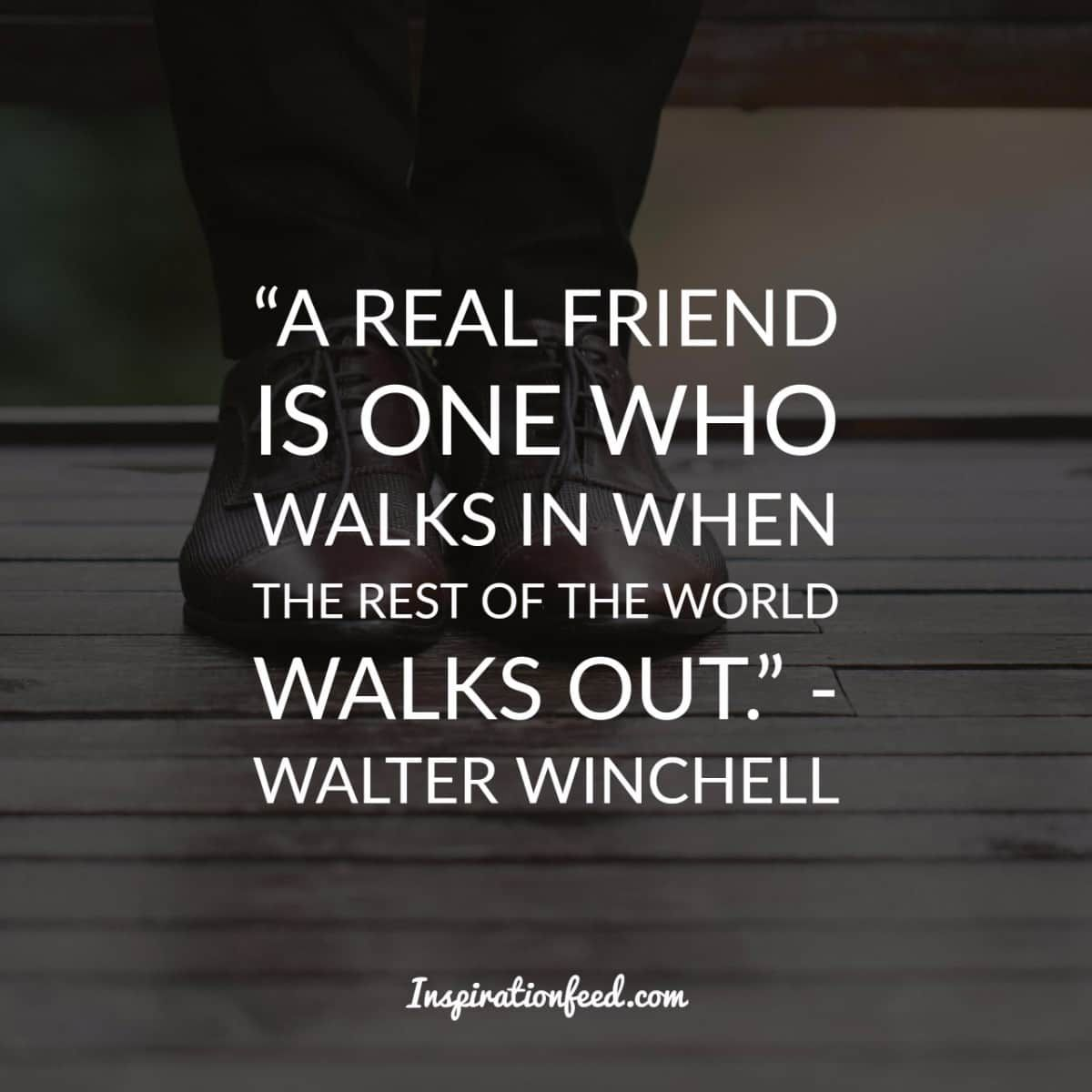 Funny Quote About Friendship 40 Friendship Quotes To Celebrate Your Friends  Friendship Quotes
