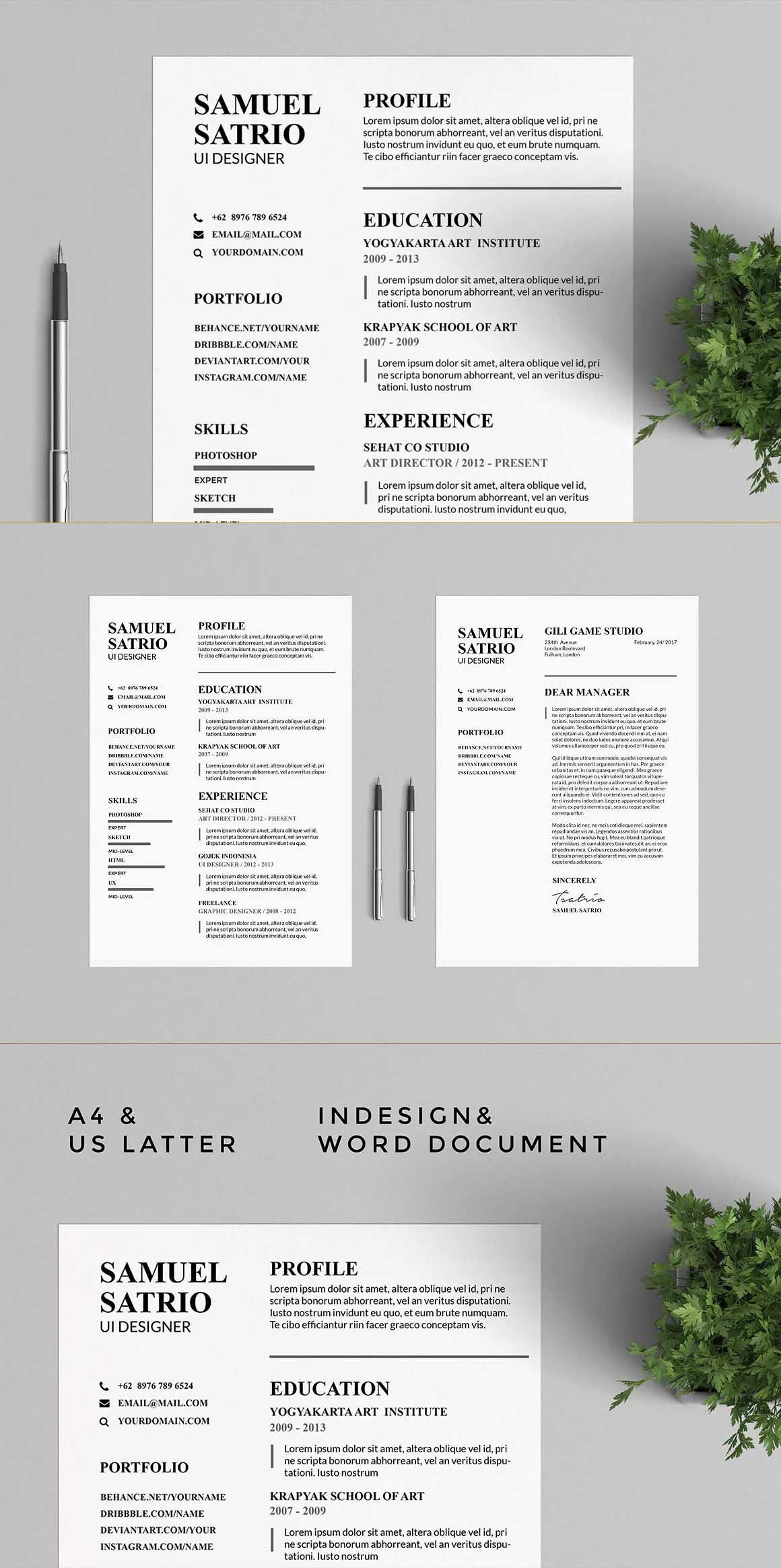 Resume Templates Indesign Pros Resume & Cv Templates Indesign Indd Ms Word  A4 And Us