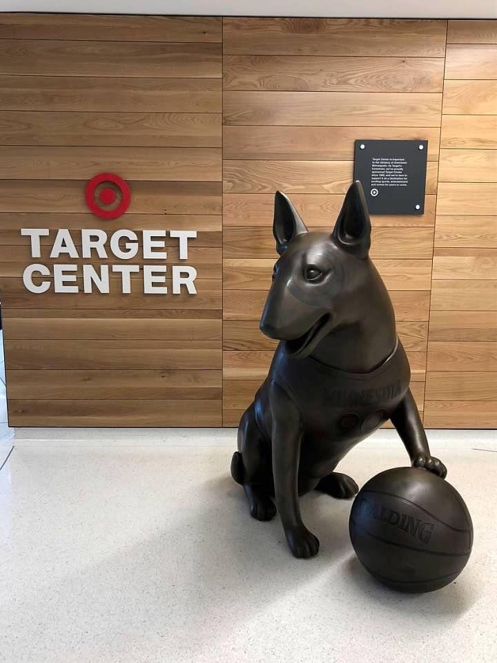 19++ League city animal clinic ideas in 2021
