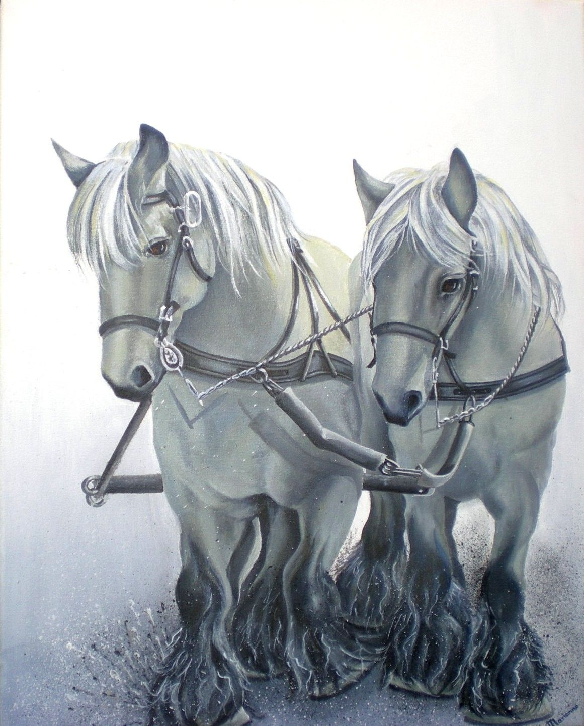 #horseriding #horserider #equine happily //   Paarden