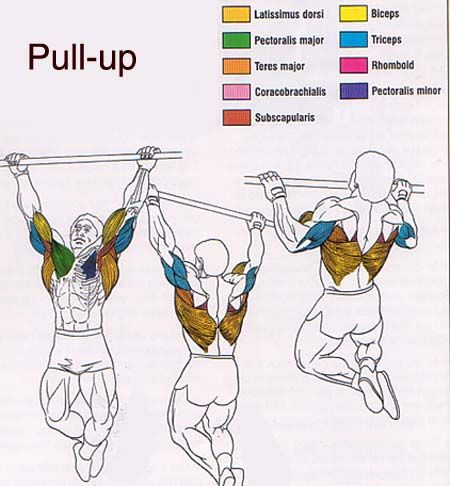 Why Aren't You Doing Pull-Ups