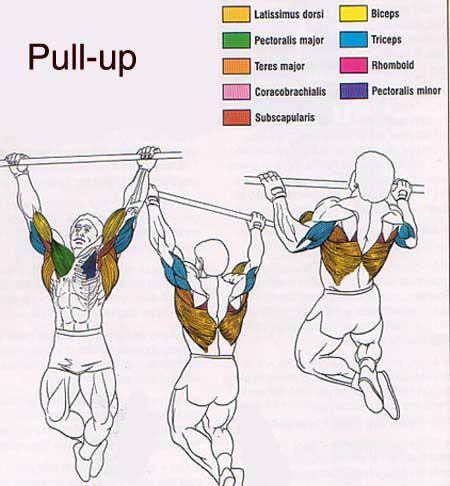 DTP-Training für den Fettabbau