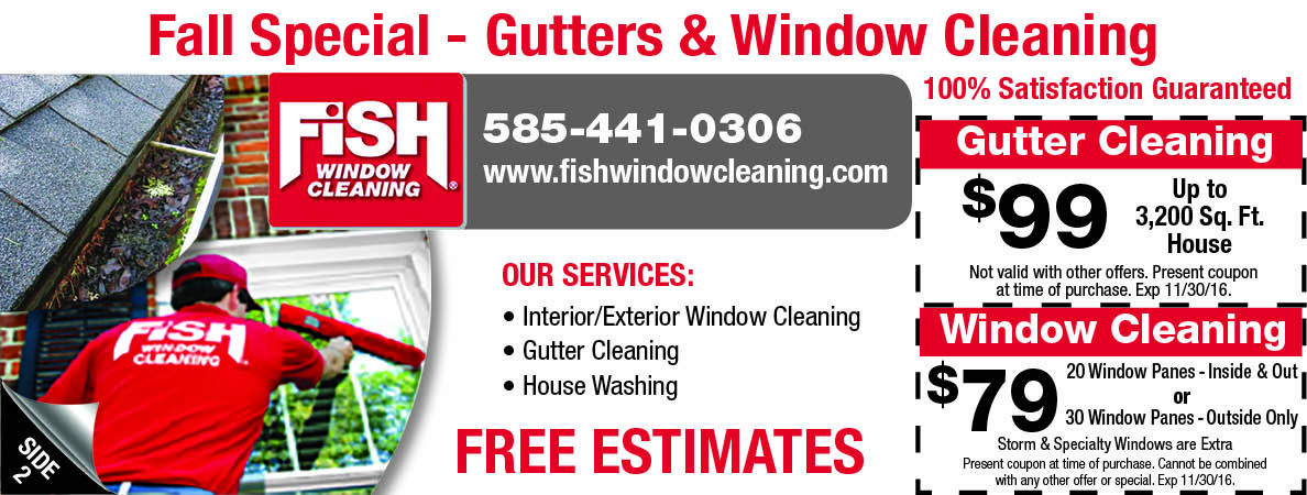 Fish Window And Gutter Cleaning Coupons Rochester Ny Get A Free Estimate Cleaning Gutters Gutter Gutters