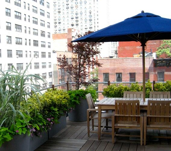Garden Terrace Apartments: NEW YORK GARDEN & LANDSCAPING