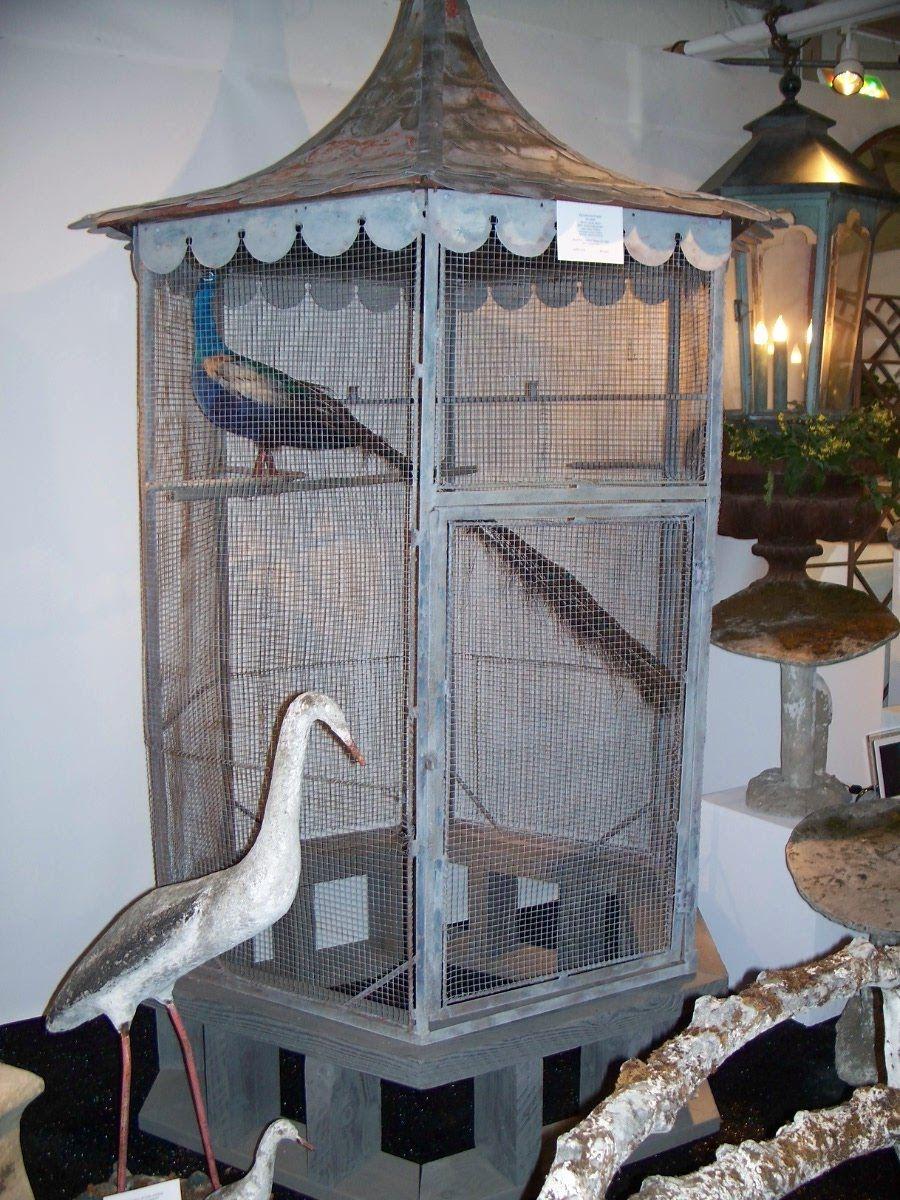 La Maison Fou Bird on a wire. Jaulas