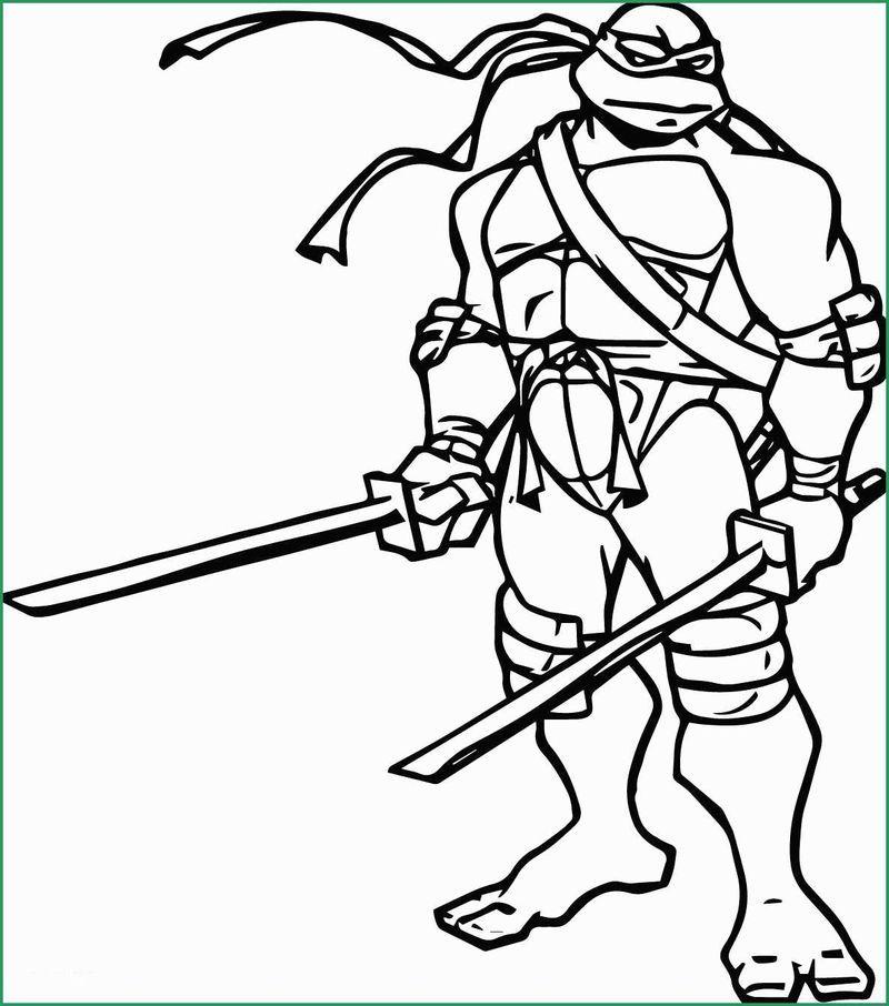 Teenage Mutant Ninja Turtle Coloring Page Ninja Turtle