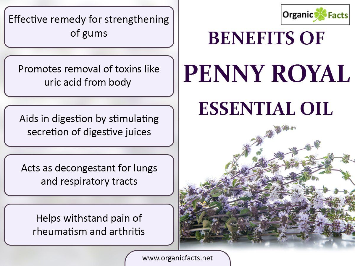 The Health Benefits Of Penny Royal Essential Oil Can Be Attributed To Its Properties Like Anti Hysteric Essential Oils Body Essential Oils Essential Oil Plants