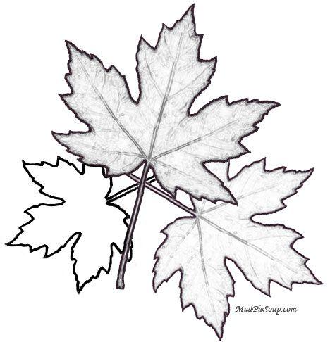 Fall Leaves Coloring Printable Jpg 468 486 Pixels Coloring Pages Fall Coloring Pages Fall Coloring Sheets