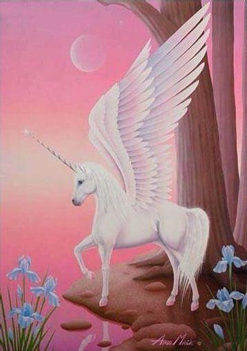 Flying Unicorn Unicorns And Flying Horses Pinte