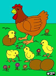 Resultado de imagen para dibujos gallinas y pollitos