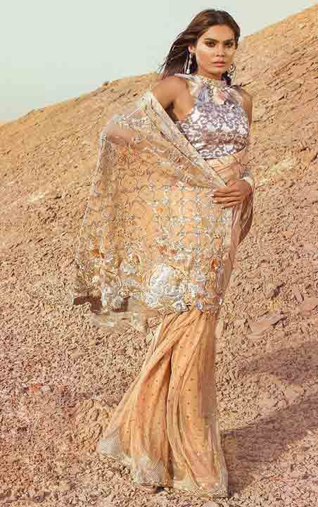 Light peach new Eid saree latest Pakistani saree designs 2017