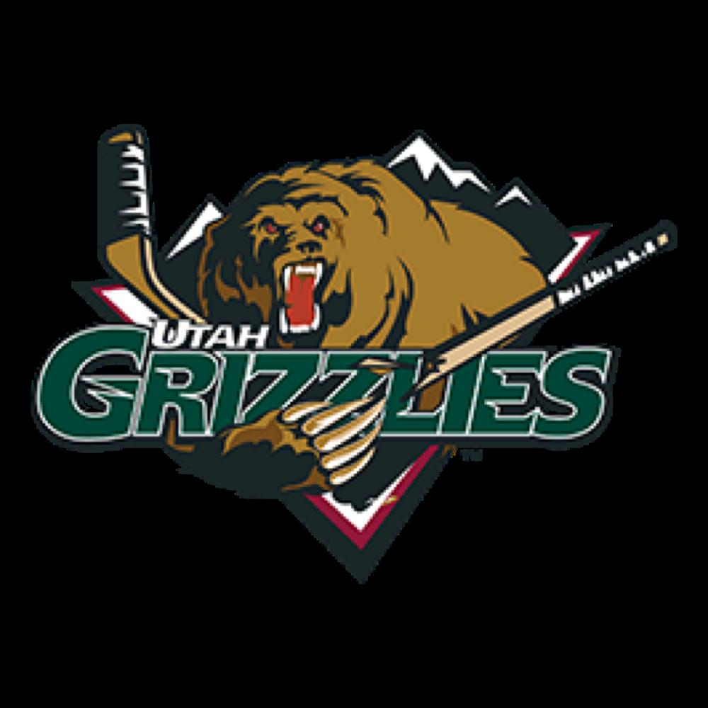 Utah Grizzlies in 2020 Team colors, Grizzly, Utah