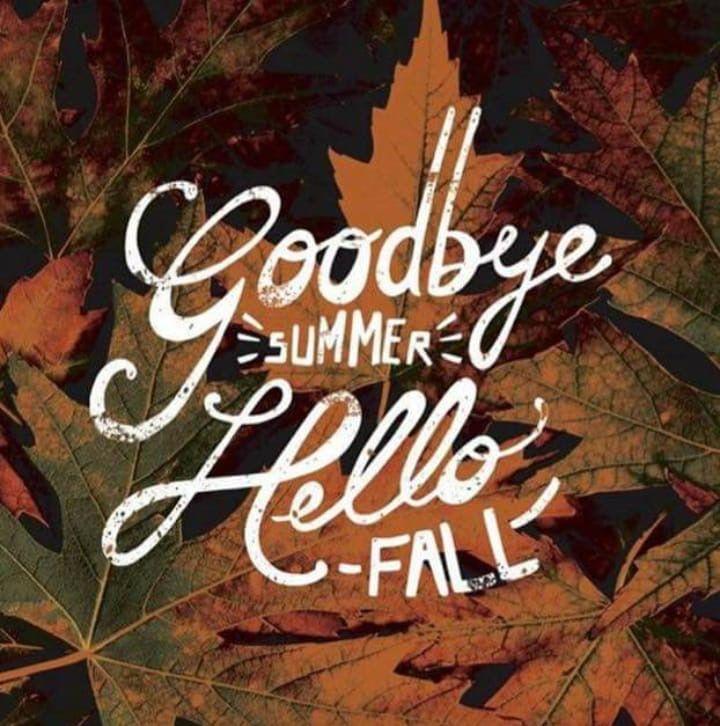 картинки на тему пока лето привет осень радость