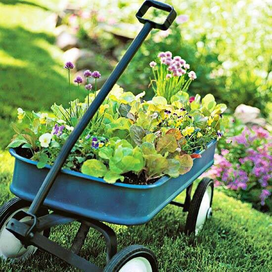 I did this a couple times (w an old wooden wagon). I used long window plant containers to save the wagon. It was easy, took less dirt & cleaner. Best part, it could be moved!