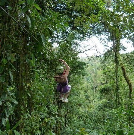 Costa Rica and Beyond Nature of the Rainforest