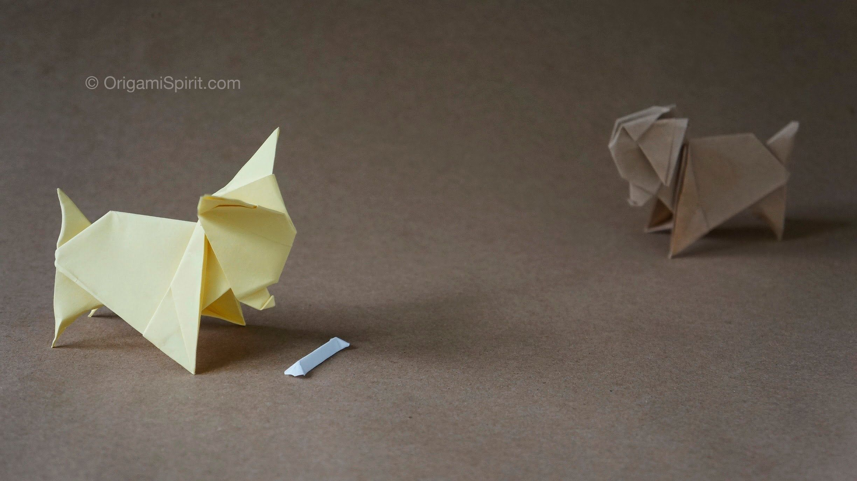 Origami tutorial and video instruction on how to make an origami origami tutorial and video instruction on how to make an origami dog origami chihuahua jeuxipadfo Choice Image