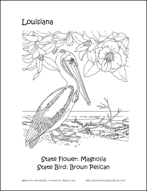louisiana wordsearch crossword puzzle and more flower coloring pagescrossword