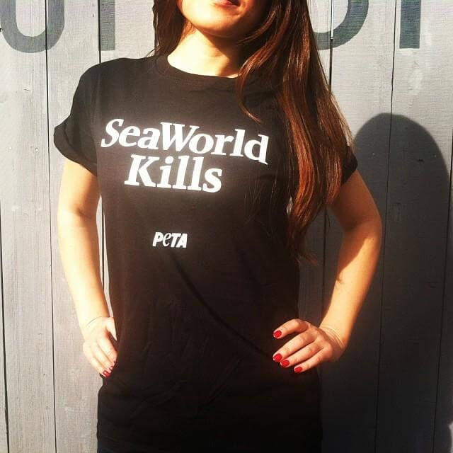 Here are five easy things that we can do to help shut the doors of the horrid marine-mammal amusement park known as SeaWorld.