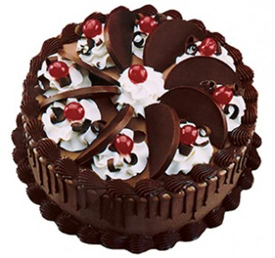 Online Cake Delivery In Chennai More Than 250 Modified Sweet Flavors