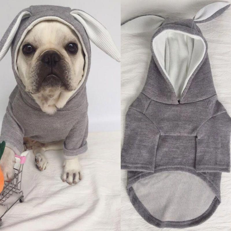 Dog Clothes Birthday Girl #dogstagram #DogClothes