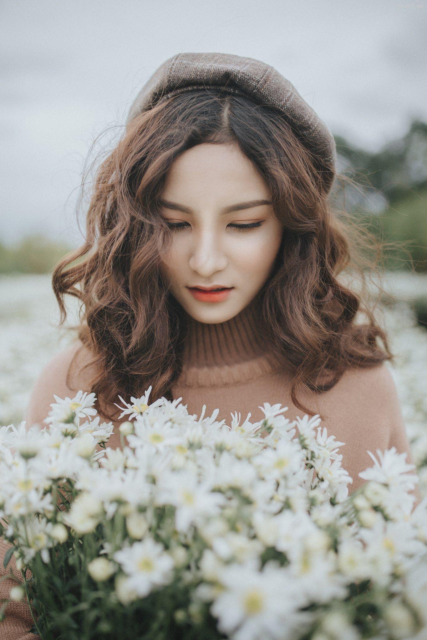Ý nghĩa của loài hoa cúc họa mi | Hoa cúc họa mi, Tóc đẹp ...