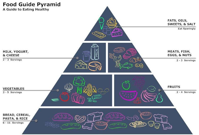 Food Pyramid Diagram | Presentation Quality Visuals | Pinterest ...