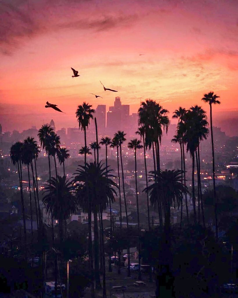 Cali sunsets in 2019 City iphone wallpaper, Iphone