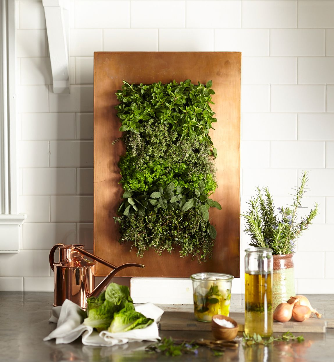 A copper (modern) contemporary herb garden for the kitchen.