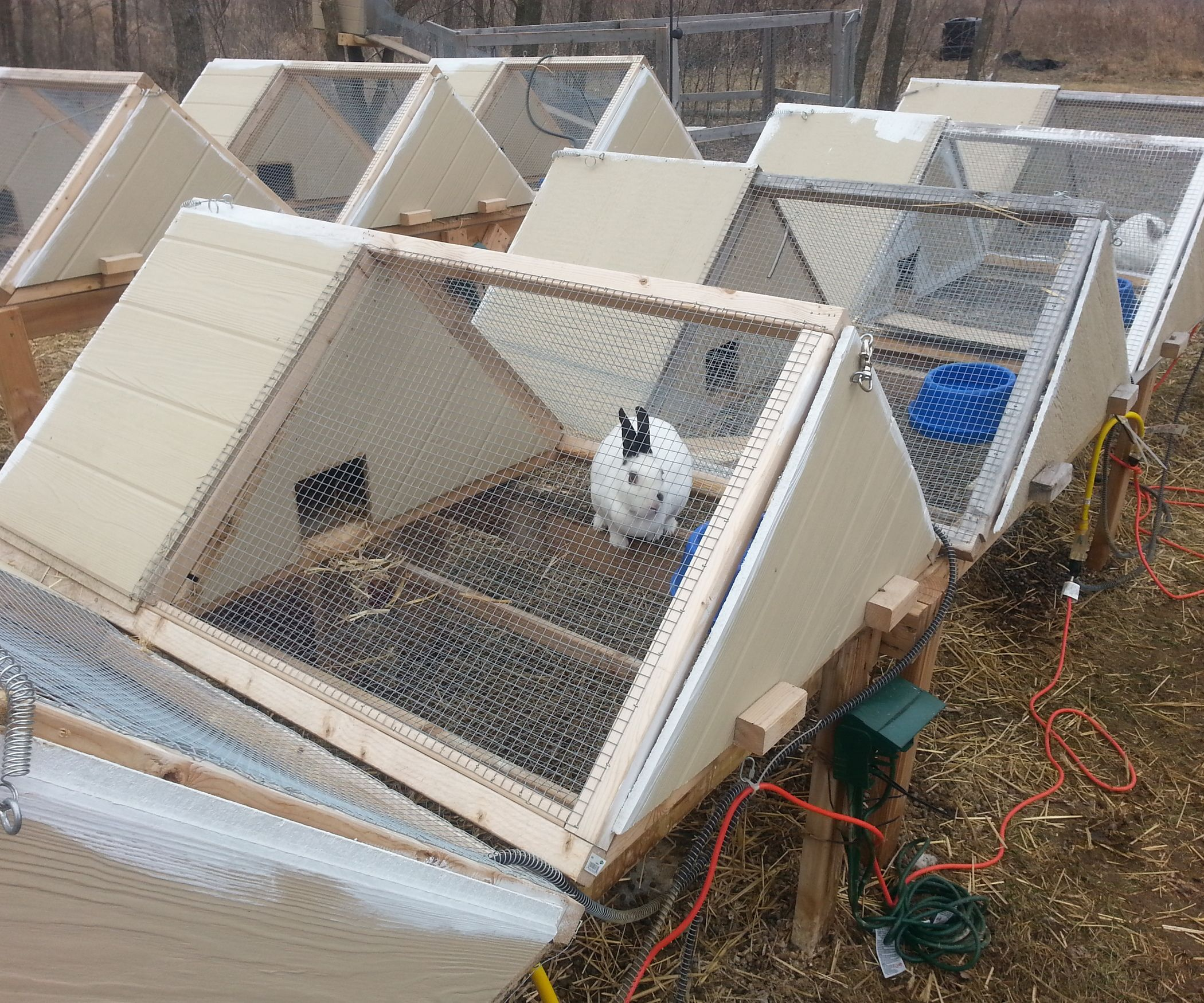 Super great a frame rabbit hutch predator rabbit and for Diy hutch plans