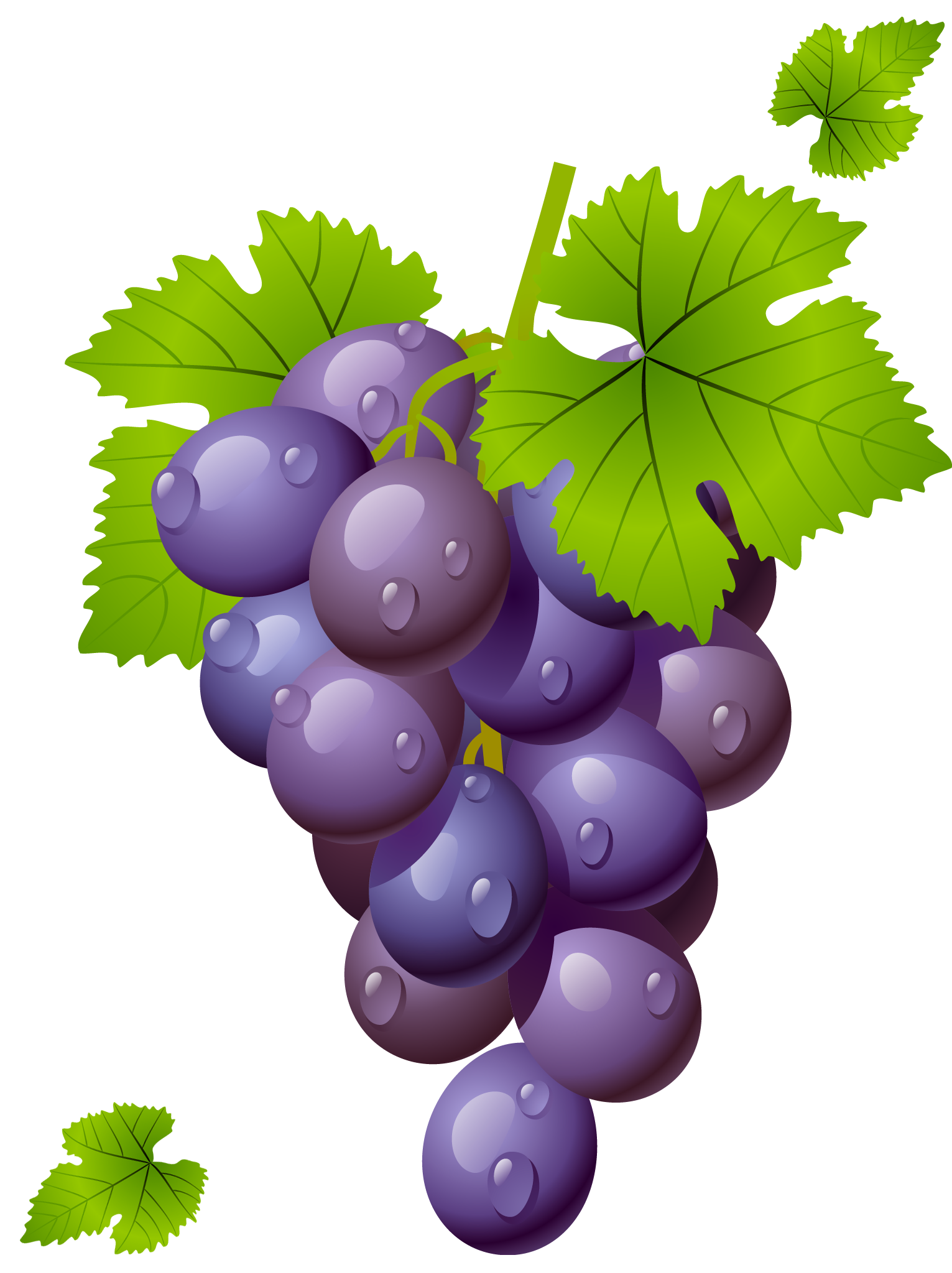 grape with leaves png clipart picture fintyfluszki pinterest rh pinterest com grace clip art free grape clip art free