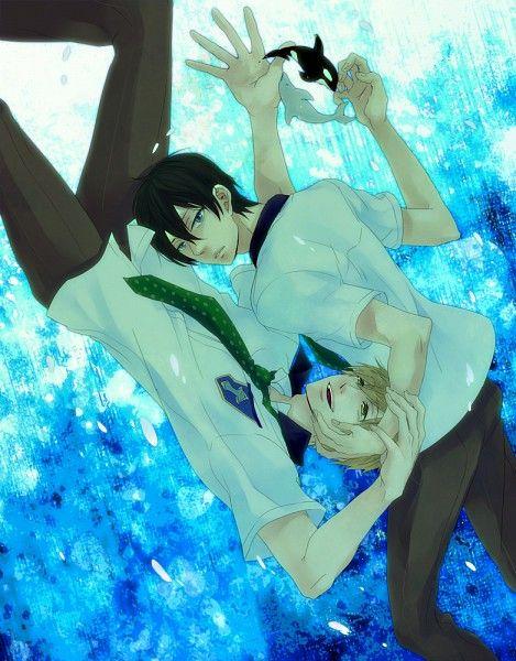 MakoHaru (Free! Iwatobi Swim Club)