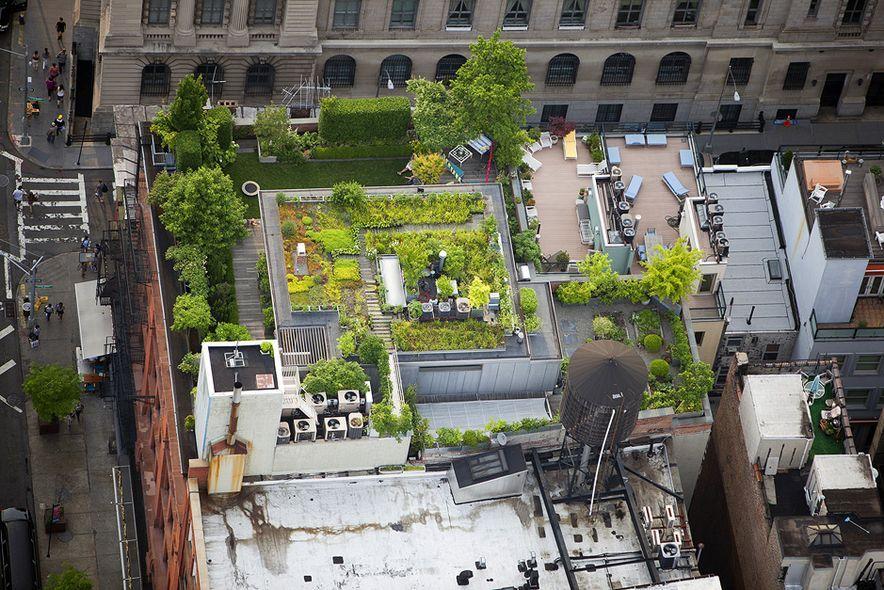 Alex MacLean hat aus dem Hubschrauber New Yorks verblüffende Dachlandschaften fotografiert. In seinen Bildern zeigt er eine bislang verborgene Sicht auf die Stadt.