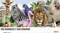 Nuevo video para aprender los animales y el sonido de los animales