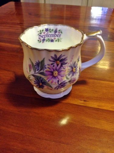 Elizabethan-Staffordshire-Hand-Decorated-Fine-Bone-China-September-Cup