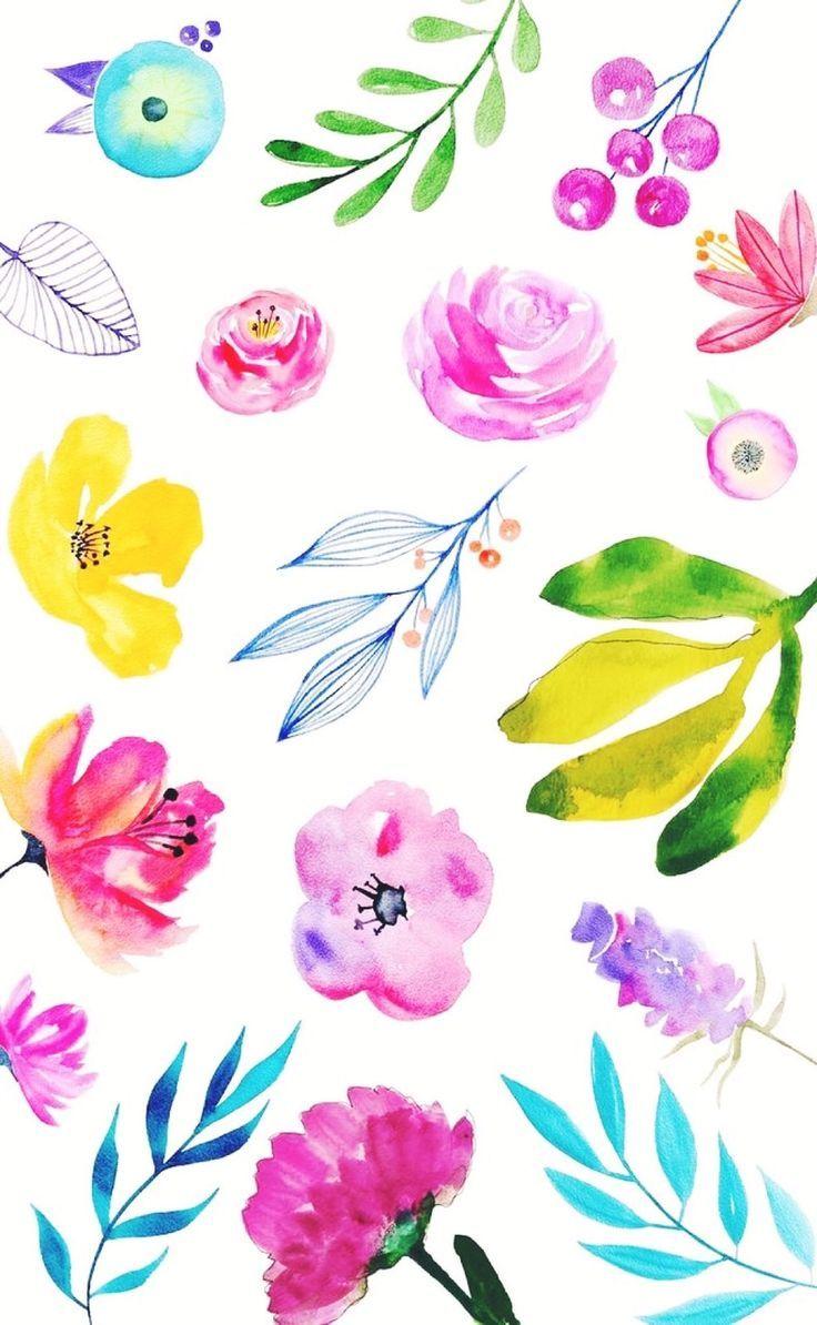 Flowers 🌸✨ uploaded by 💖Mandy's Hearts💖 on We Heart It