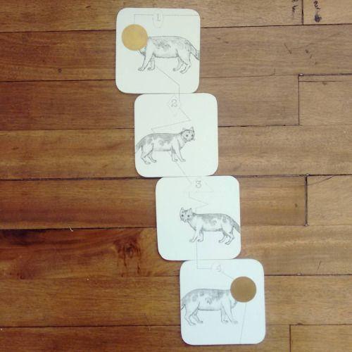 """ Un gato en cuatro pasos "" set de 4 posa vasos pieza única #Himallineishon #illustration #cat #homedecor #handmade #handpainted"