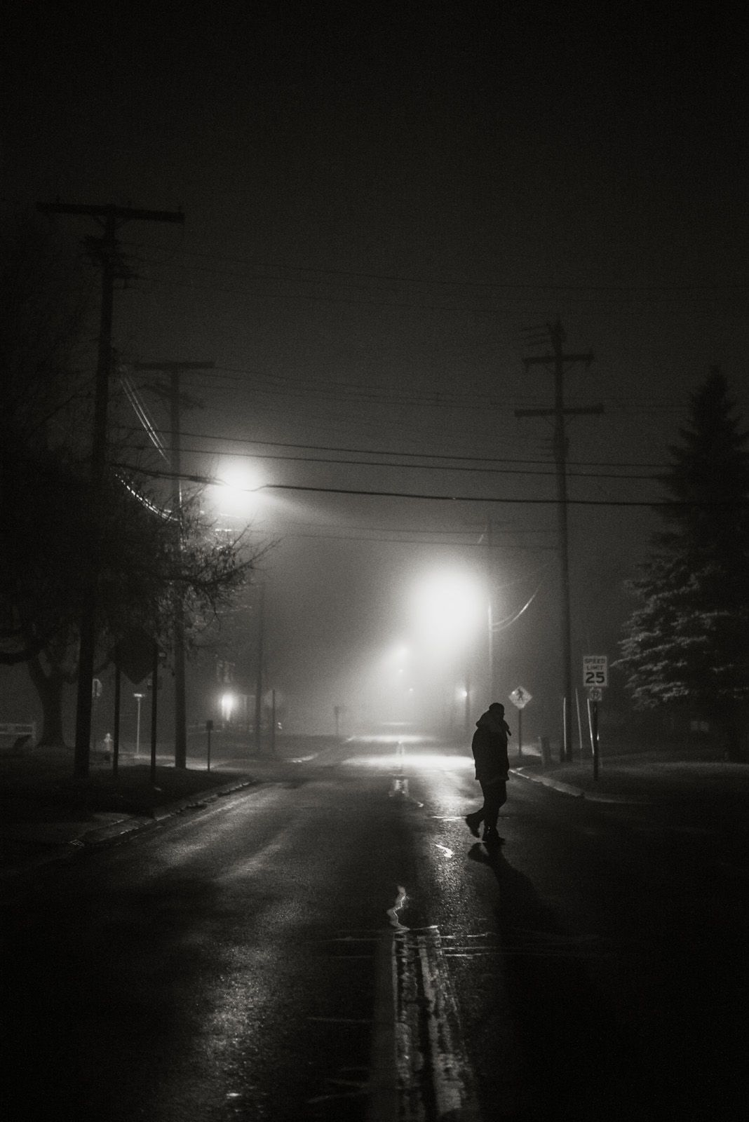 Oh Hey There Stranger Man Crossing The Street On A Foggy Night Howell Michigan Marissa Hoard Photography Nature Photographs Photography Nature