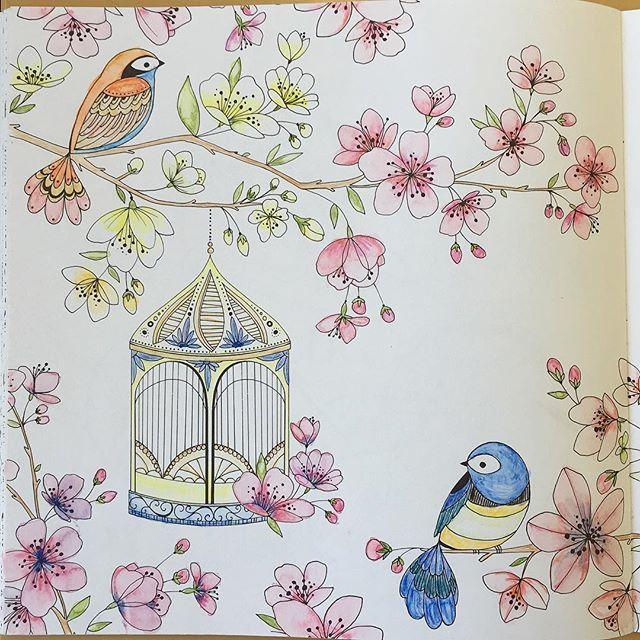 Joyousbloomstocolor On Instagram