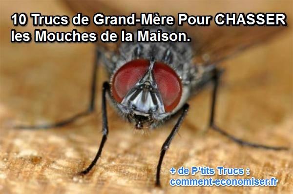 10 Trucs De Grand Mere Pour Chasser Les Mouches De La Maison