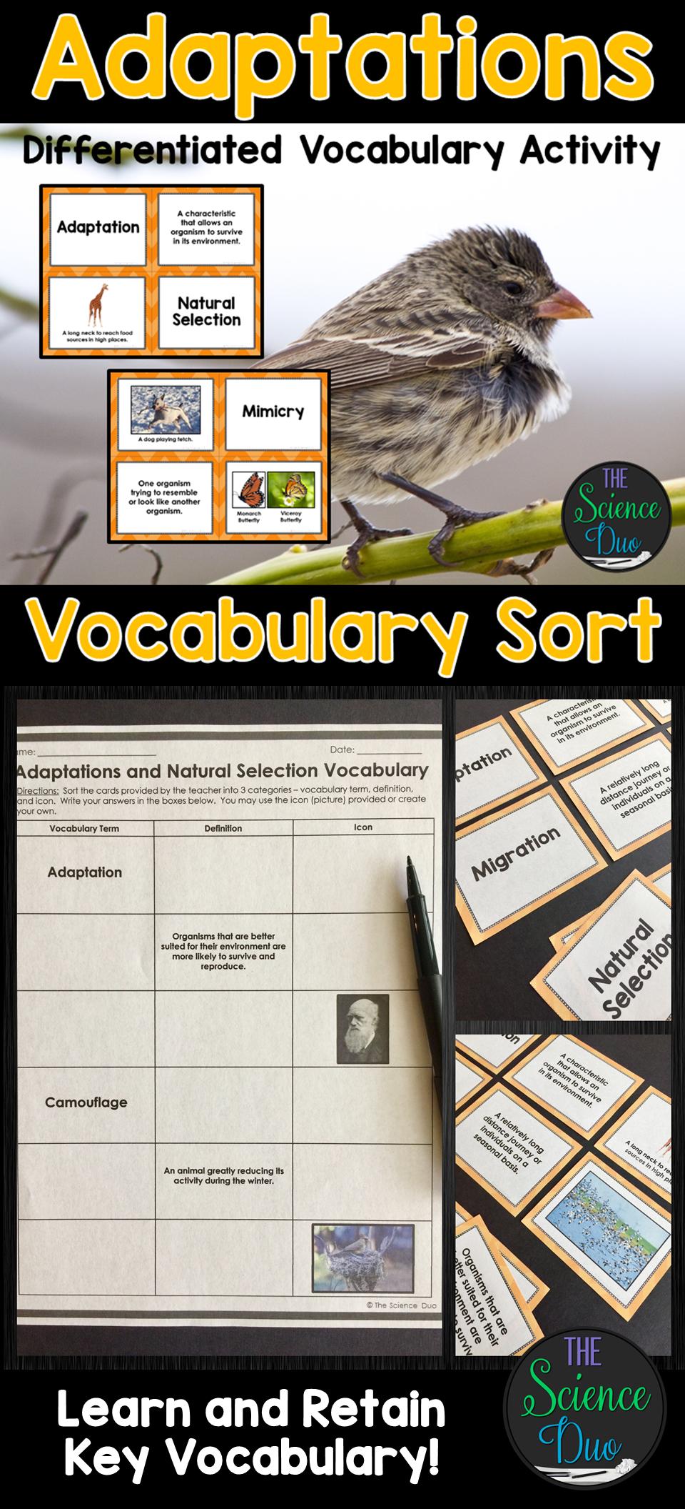 Adaptations and Natural Selection Vocabulary Sort