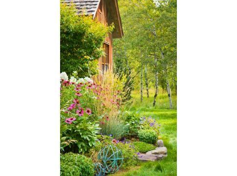 Montana Mix Mountain Living Beautiful Gardens Cottage Garden Dream Garden