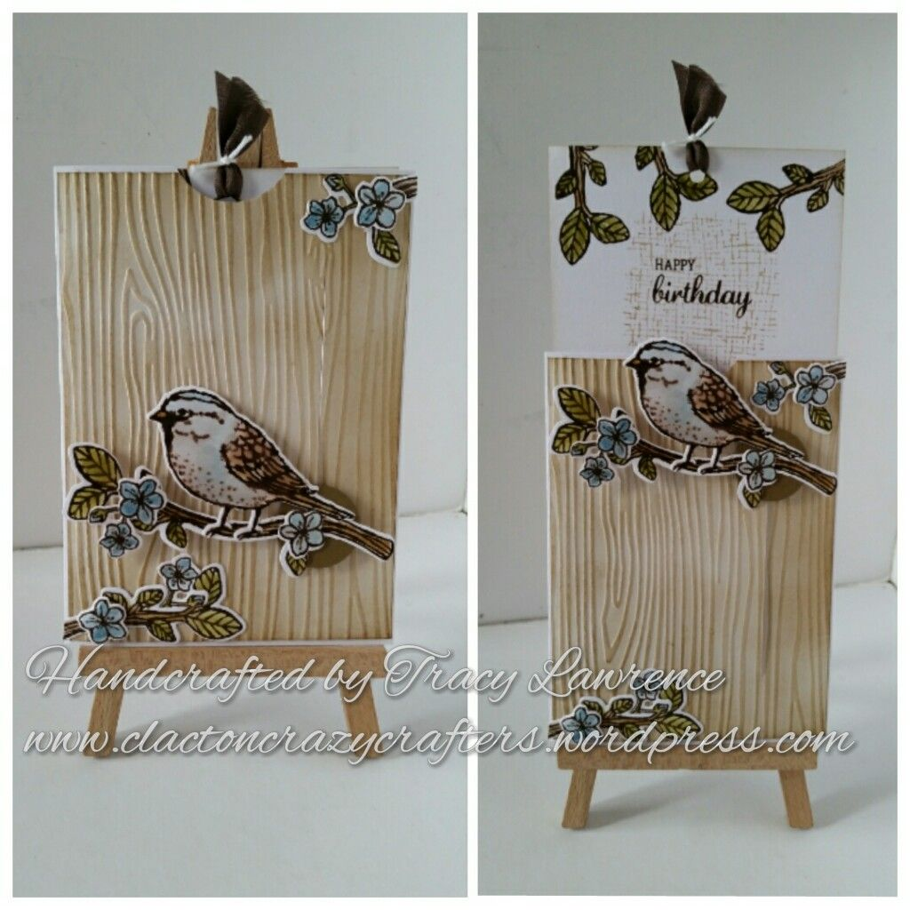 Best birds slider card by Tracy Lawrence independent stampin up demonstrator