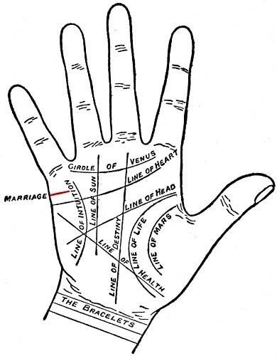 Marriage Line Position And Direction Palmistry Palmistry