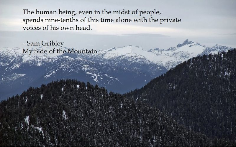 Jean Craighead George Quotes: My Side Of The Mountain