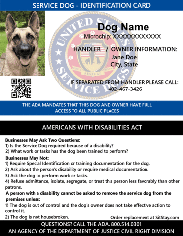 Id Card Service Dog With Holographic Security Seal Service Dogs Medication For Dogs Emotional Support Animal