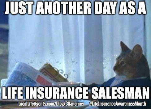 337663703e51058568d15db799e5dea7 funny life insurance memes form local life agents funny financial